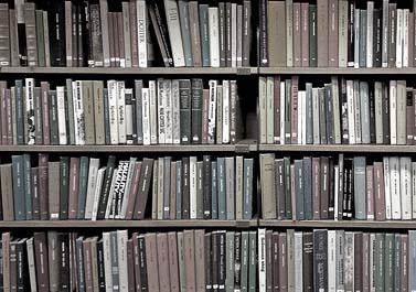 Libros de autor y de fuera de las instituciones en Guanajuato