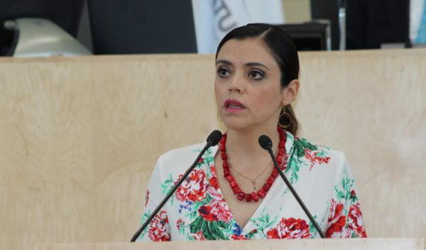 GPPRI propone ampliar la protección a los derechos humanos en la ley del ISSEG