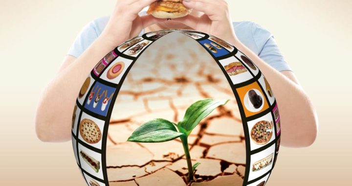 La obesidad, ligada al calentamiento global*
