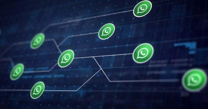 Utilizan WhatsApp 77 millones de mexicanos*