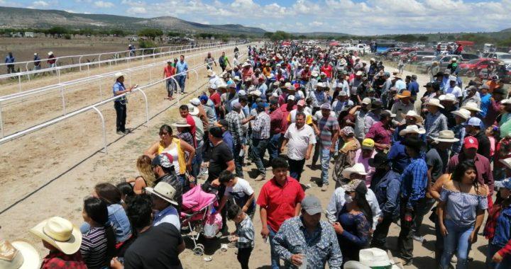 En plena contingencia sanitaria, más de 300 personas participan en carrera de caballos